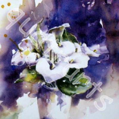 Arums- 27 x 45 cm- 160 euros- octobre 2014