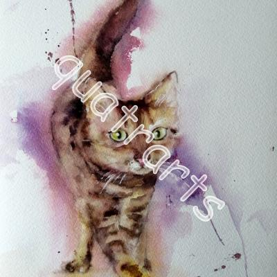 Chat...leidoscope- 30x 40 cm- Mai 2020- VENDU